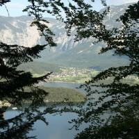 Through Trees Across Wolfgangsee
